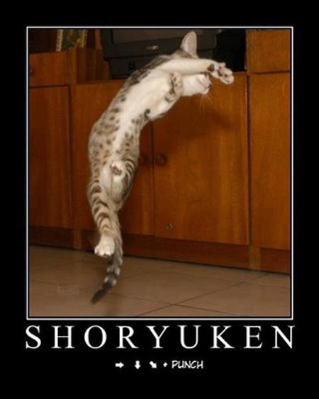 ShoOOoryúkeN!!